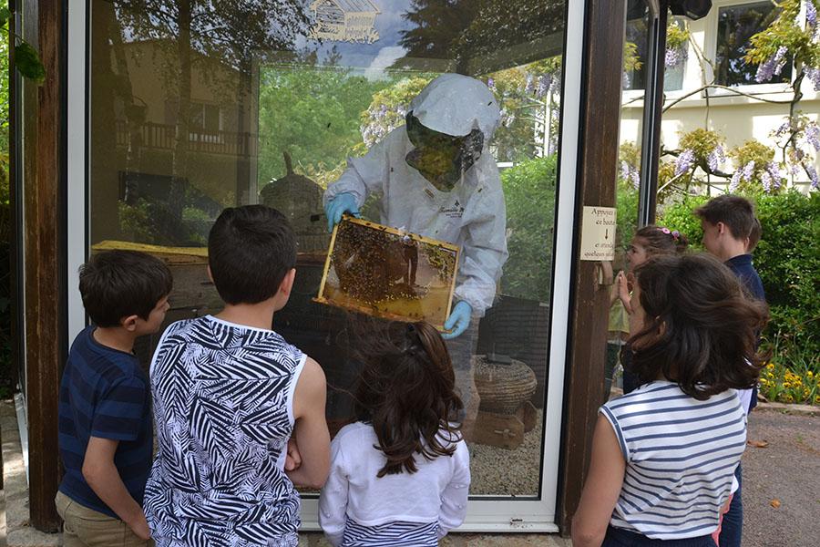 La maison de l'apiculteur
