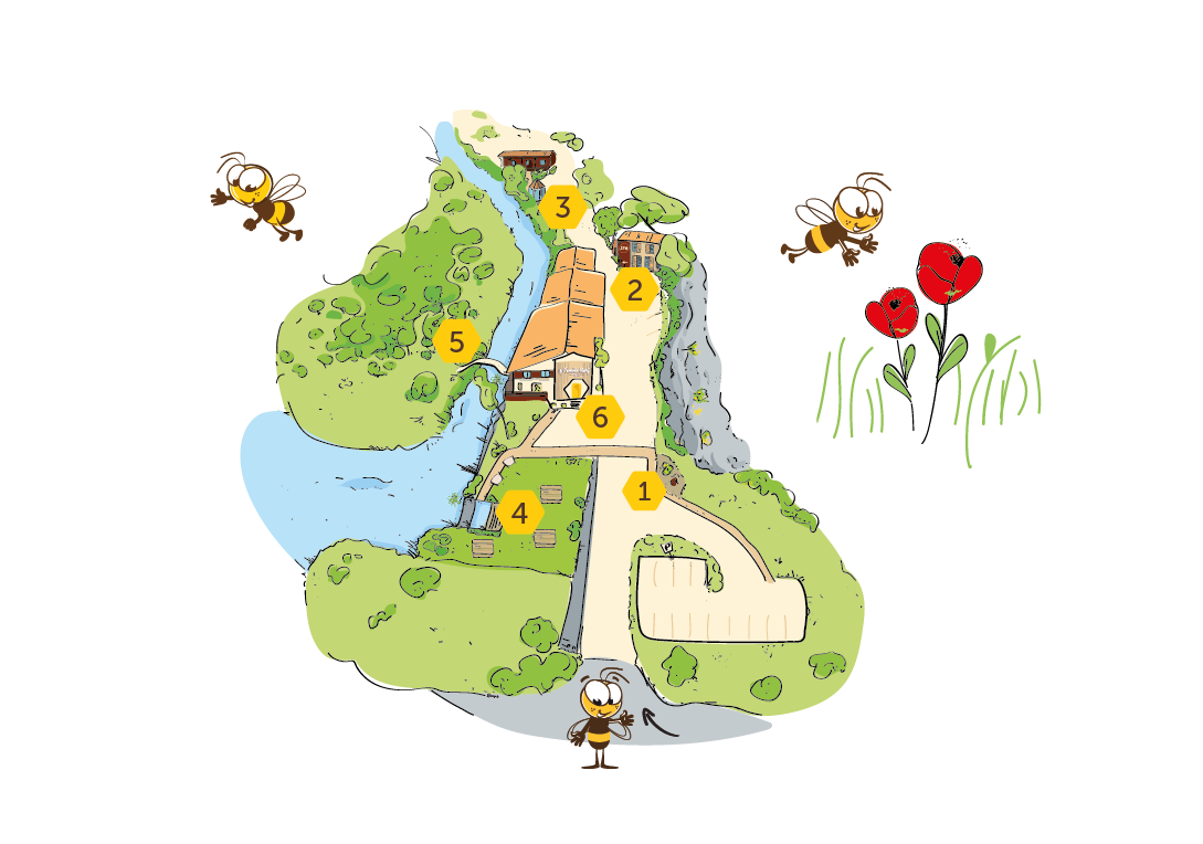 Plan de viste du site la ruche de Mary